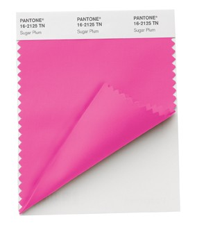 Pantone%26reg%3B+for+Fashion+%26amp%3B+Home+Nylon+Brights+Smart+Color+Swatch+Cards+Double+Folded+TN+Nylon
